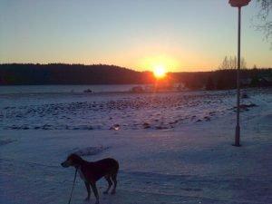 Hyvää Itsenäisyyspäivää! Auringon nousu 9.24